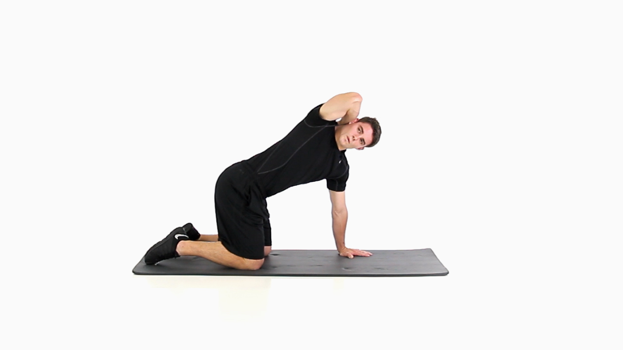 Quadruped T Spine Rotation Functional Movement Systems