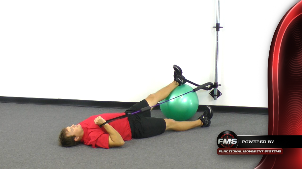 Dorsiflexion Resisted Ball Roll With Core Activation With